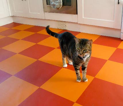 orange and red checkered vinyl flooring