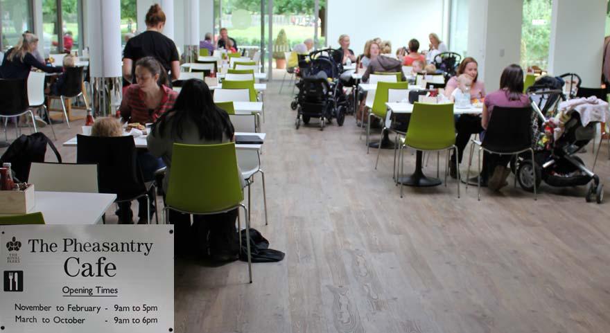 vinyl wooden flooring in a cafe