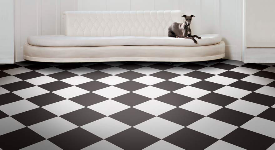 chequerbaord flooring in living room with modern sofa and a dog