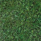 Grass photo floor