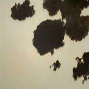 brown cow hide design flooring