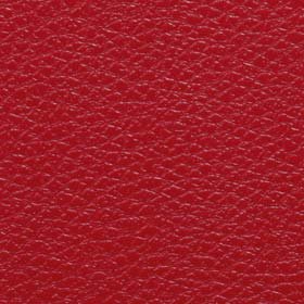 single red leather flooring
