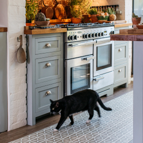 Black cat walking through a country kitchen with lattice flooring