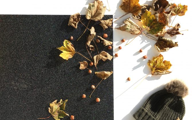 black sparkle flooring wiht autumn leaves
