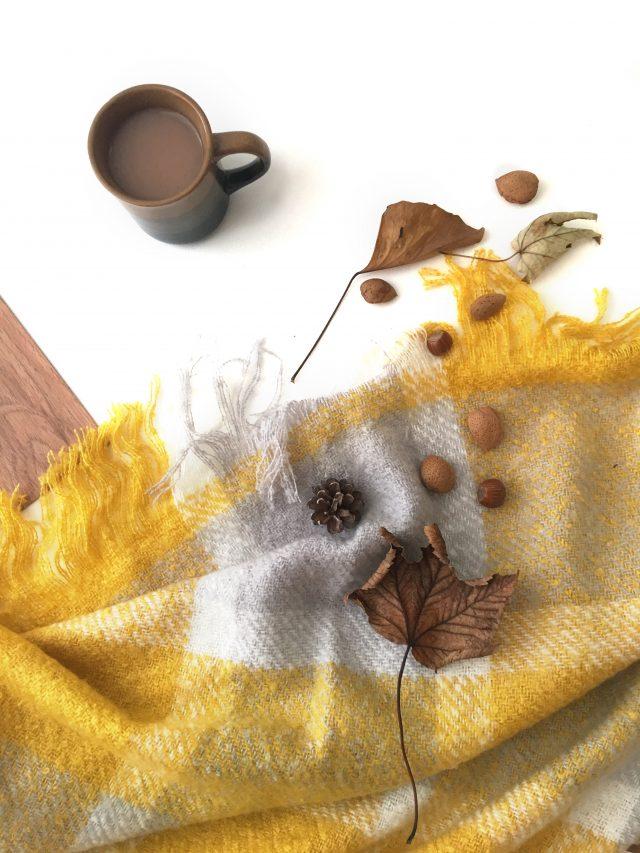 autumn flatlay on wooden floor