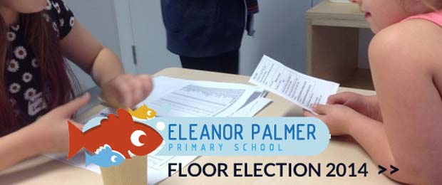 school flooring election - Eleanor Palmer