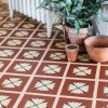 terracotta floor with plants