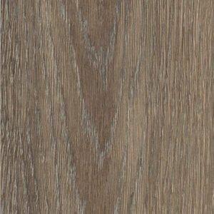 garden oak sample